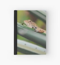 SHOULD I STAY ... Hardcover Journal