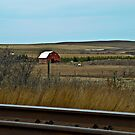 Spring On The Prairie by PFrogg