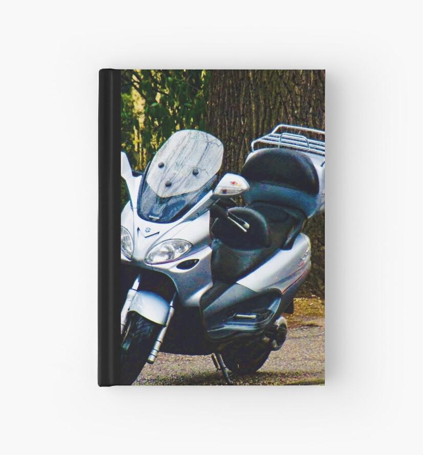 Face on a Moped, Bolzano/Bozen, Italy by L Lee McIntyre