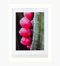 Ripe hip Brust forth and multiply Art Print