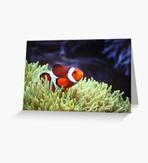"""""""Nemo, where are you?"""" Greeting Card"""