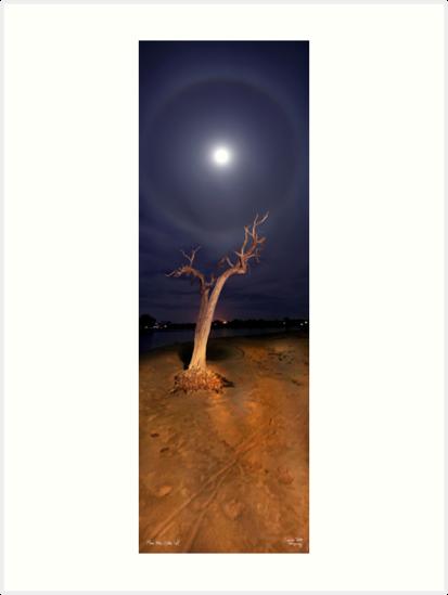 Moon Halo by Sheldon Pettit