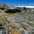 Rock Pool Patterns by Penny Smith