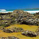 Minnie Water Rock Pools by Penny Smith