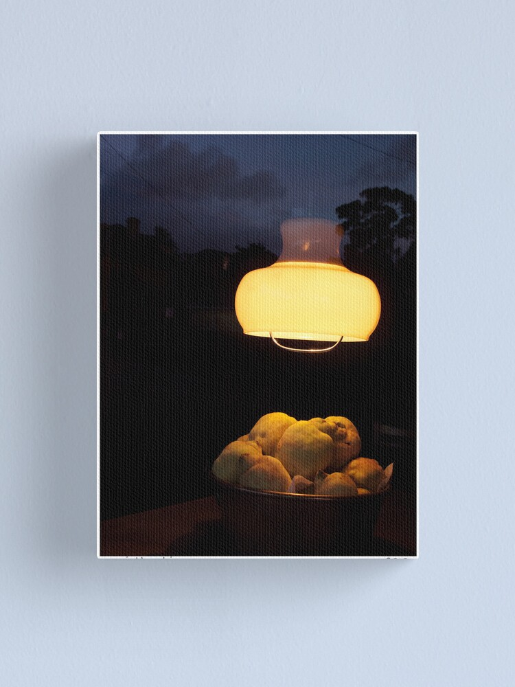 Alternate view of Night Skins 2 Canvas Print
