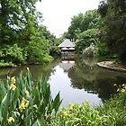 Inviting Tea House across the Duckpond, Botanic Gardens Adelaide CBD. by RitaBlom