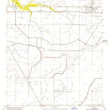 USGS TOPO Map Louisiana LA Iowa 332296 1955 24000 by wetdryvac