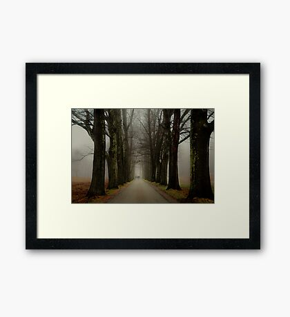 Winter Companions Framed Print