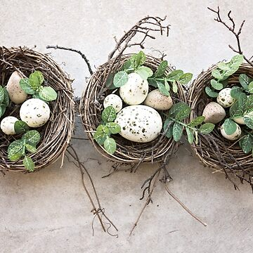 Three Nests Of Spotted Eggs by GypseaDesigns