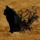 Wisps Of Smoke Black Cat  by GypseaDesigns