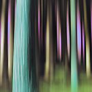 forest impressions IV by Purplecactus