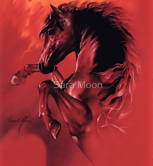"""Red Fury"" by Sara Moon"