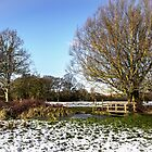 A Cold Morning in Tidmarsh Meadows by IanWL