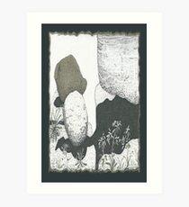 A Boulder Composition * Art Print