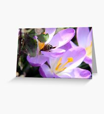 Does My Bottom Look Big in This? Greeting Card