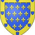Coat of Arms of Ardèche, France by PZAndrews