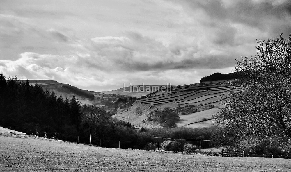 Along The Valley by Lindamell