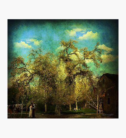 The Serenity (La Serenissima) Art & Poetry Photographic Print