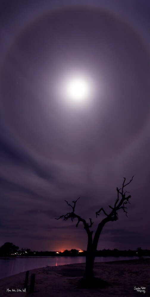 Moon Halo #2 by Sheldon Pettit
