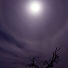 Moon Halo #2 by Sheldon Pettit