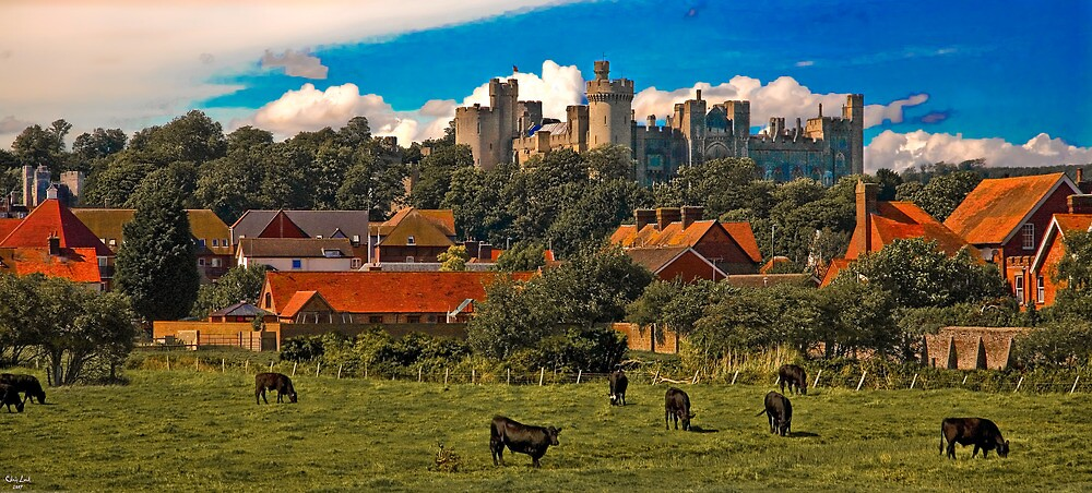 Arundel Castle, Red Rooftops and Cows  by Chris Lord