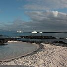 Galapagos Islands: Beach and Yachts by tpfmiller