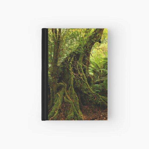Rainforest Trail Hardcover Journal