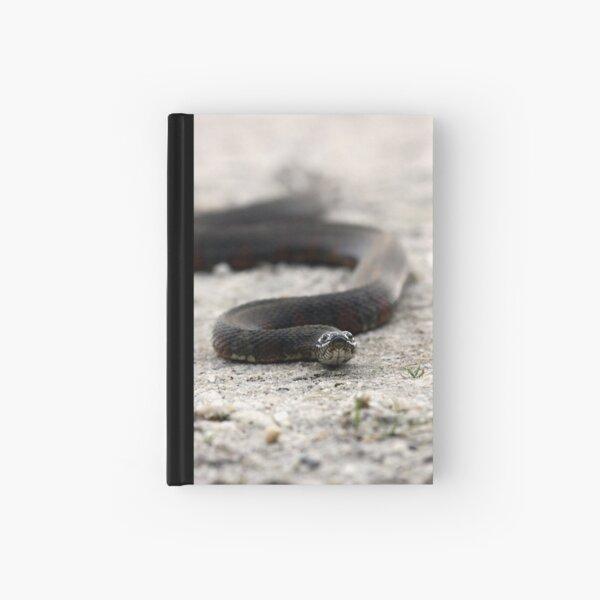 Water Snake Hardcover Journal