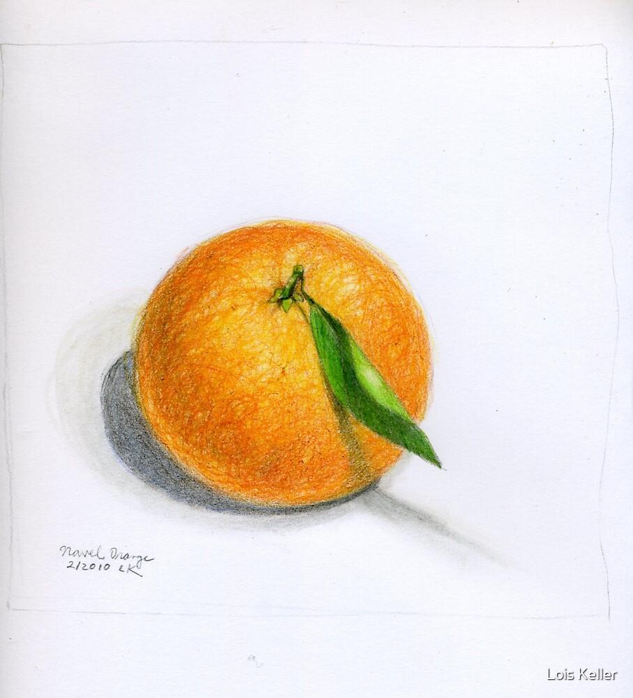 Navel Orange with Leaf by Lois Keller