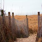 Wooden Sand Fence by Cynthia48