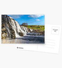 Hopkins Fall Postcards