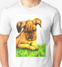 Rocky takes a rest 129 views Unisex T-Shirt