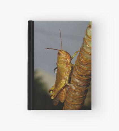 Wet Cricket Hardcover Journal