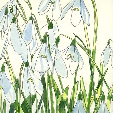 Snowdrops watercolour by esvb