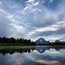 Oxbow Bend View, Grand Tetons NP by Teresa Zieba