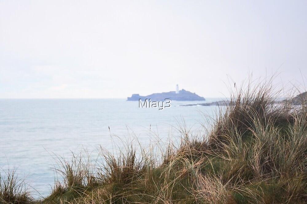 Coastal Footpath  by Miay3