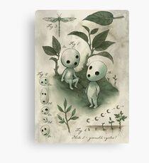 Natural History - Forest Spirit studies Canvas Print