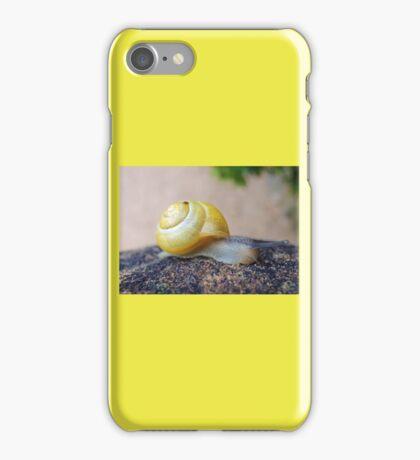 Yellow Snails Bring Joy  iPhone Case/Skin