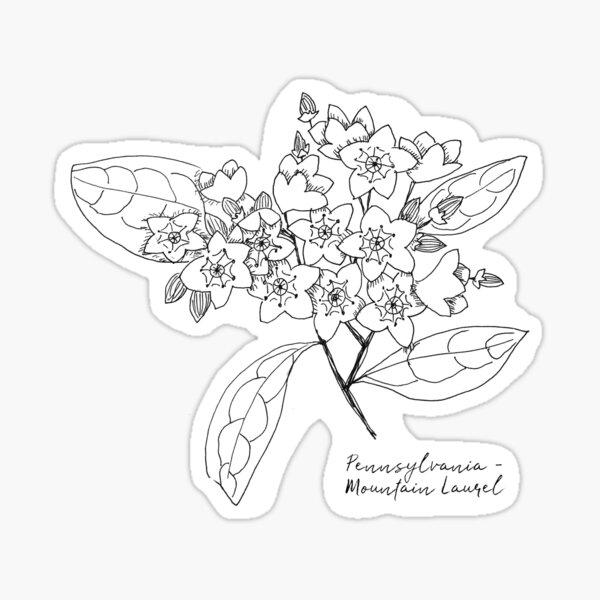 Pennsylvania State Flower Sticker WATERPROOF
