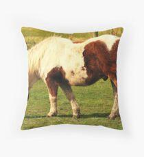 Welsh Cob Pony Throw Pillow