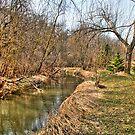 Creek Bend by ECH52