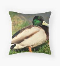 Drake Mallard Throw Pillow