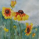 Black-eyed Susans by Kay Hale