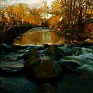 Riverfall by Sam Mortimer