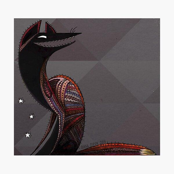 Oaxacan Coyote Photographic Print