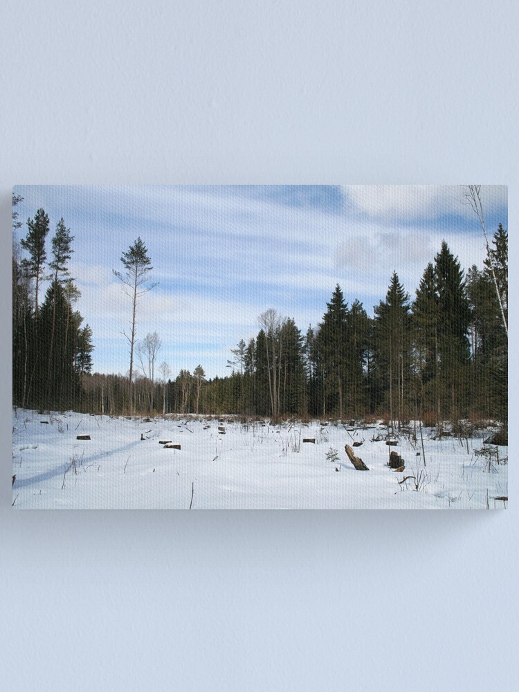 Alternate view of Winter scene Canvas Print