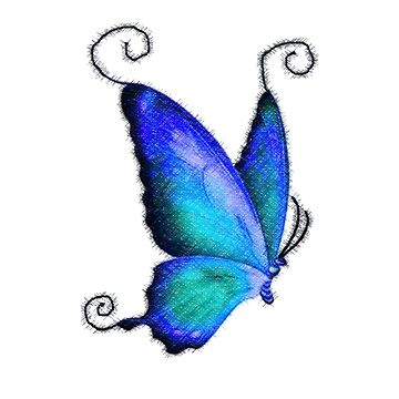 Aqua Blue Butterfly Colored Pencil Art by GypseaDesigns