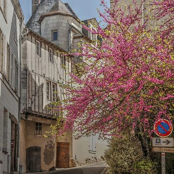 A Little French Street In The Loire Valley by Michaelm43