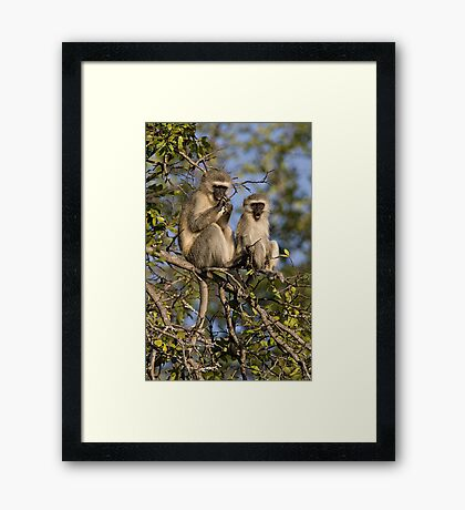 Mom! Look At What I see! Framed Print