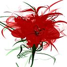 Red flower white by mjvision Mia Niemi by mjvisiondesign